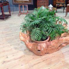 Fioriera in legno ricavata da radice Indonesia del '900